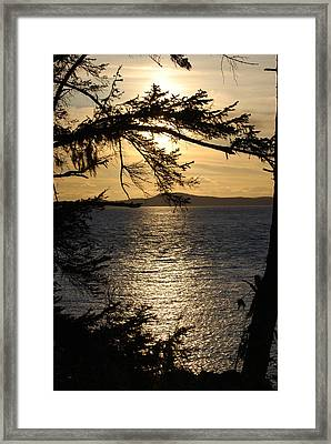 Lopez Island Sunset Framed Print by Gene Ritchhart