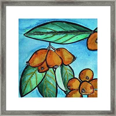 Loquats I Framed Print