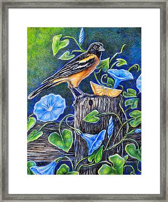 Lord Baltimore's Breakfast Framed Print by Gail Butler
