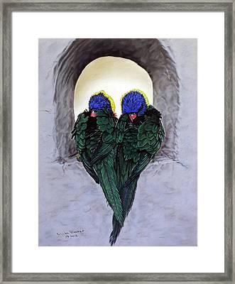 Lorikeets Framed Print
