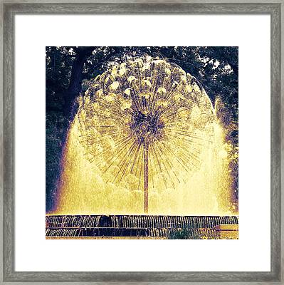Loring Fountain Framed Print by Rashelle Brown