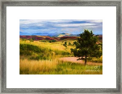Lory State Park Impression Framed Print by Jon Burch Photography