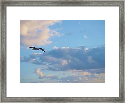 Lose Yourself In Nature And Find Peace. Framed Print