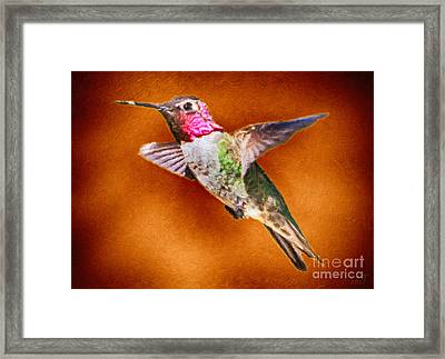 Lost And Alone Framed Print by David Millenheft