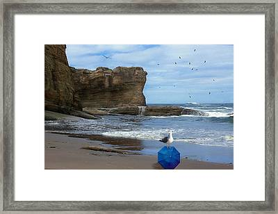 Framed Print featuring the photograph Lost And Found by Diane Schuster