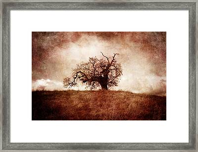 Lost And Wandering Framed Print