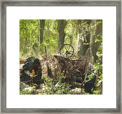 Lost Art Framed Print by Kim Zwick