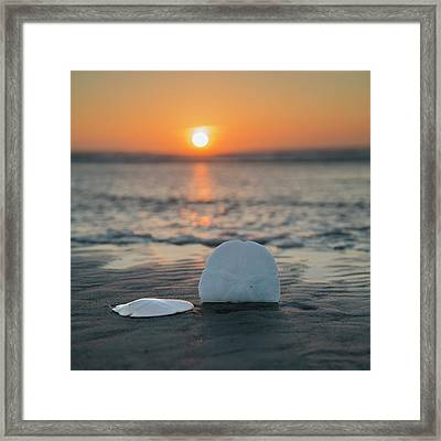 Lost By Mermaids Framed Print by Betsy Knapp