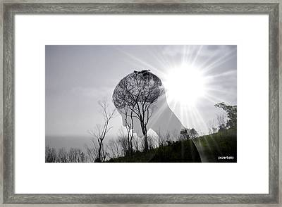 Lost Connection With Nature Framed Print