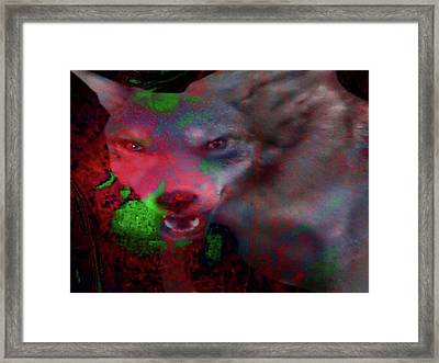Lost Dog-answers To Coy Framed Print by Mike Breau