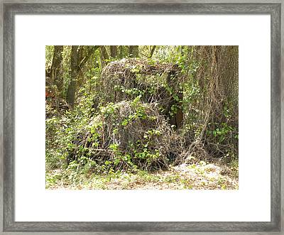 Lost Forever Framed Print by Kim Zwick