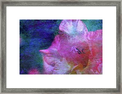 Lost Gladiolus Blossom 3018 L_2 Framed Print