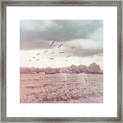 Lost In The Fields Of Time Framed Print