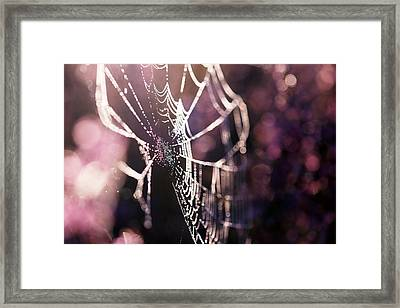 Lost In The Heath Framed Print