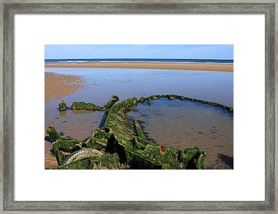 Lost In The Sand Framed Print by Aidan Moran