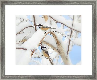 Lost In The Snow Framed Print by Karen Cook