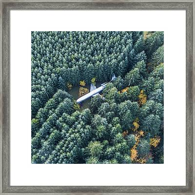 Lost In The Wild Framed Print