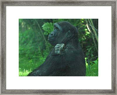 Framed Print featuring the photograph Lost In Thought by Richard Bryce and Family