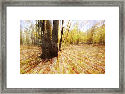 Lost In Time Framed Print by Mircea Costina Photography