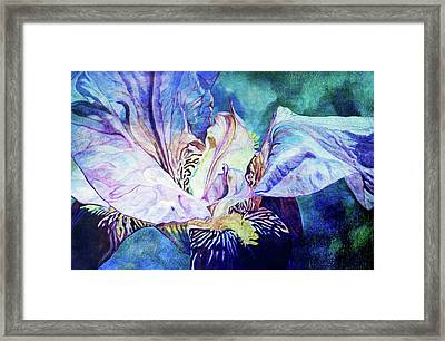 Lost Iris Passion 93 L_2 Framed Print