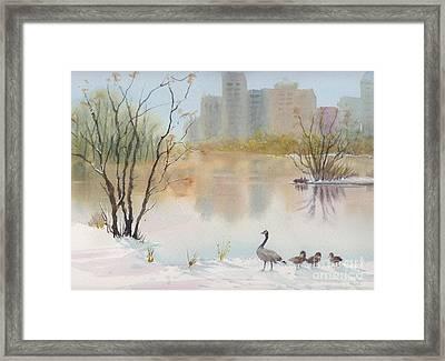Lost Lagoon In Snow Framed Print by Yohana Knobloch