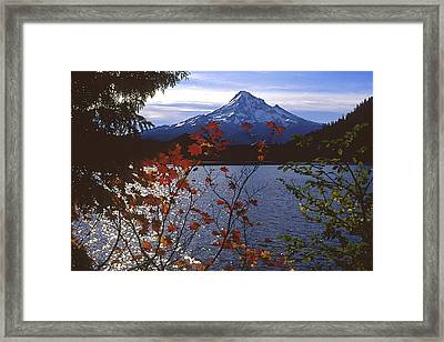 Lost Lake Framed Print by Todd Kreuter