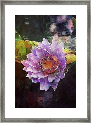 Lost Lavender Lotus Blossom 4725 Ldp_2 Framed Print