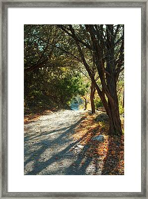 Framed Print featuring the photograph Lost Maples State Park Path 4 by Karen Musick