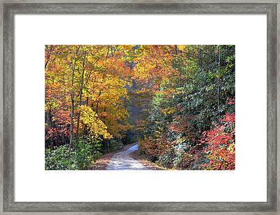 Lost Road Framed Print by Bob Jackson