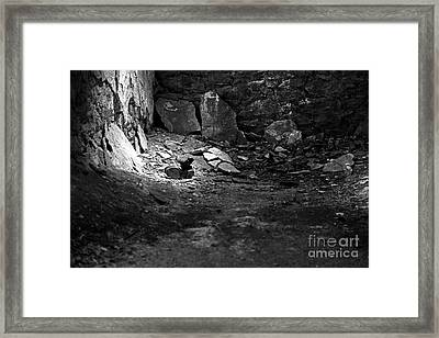 Lost Shoe - Black And White  Framed Print