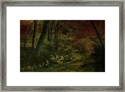 Lost Woods 8140 H_3 Framed Print