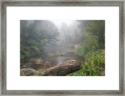 Lost World Framed Print by Martin Capek