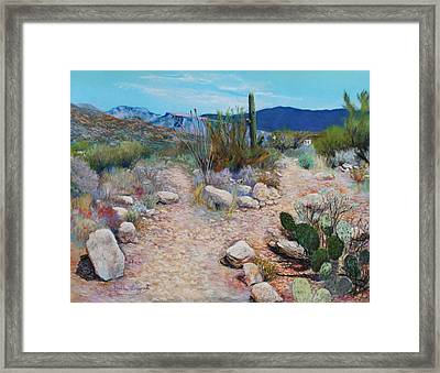 Lot For Sale Framed Print by M Diane Bonaparte
