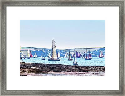 Lots Of Yachts Framed Print by Terri Waters