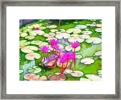 Lotus Flower 3 Framed Print by Lanjee Chee