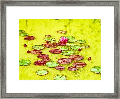 Lotus Flower On The Water 2 Framed Print by Lanjee Chee