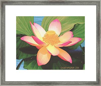 Framed Print featuring the painting Lotus Flower by Sophia Schmierer