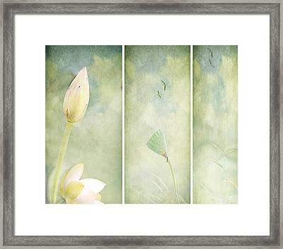 Lotus Garden Framed Print by Margaret Hormann Bfa