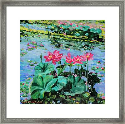 Lotus Framed Print by Alexandra Maria Ethlyn Cheshire