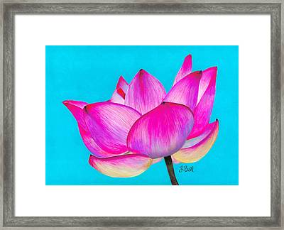 Lotus  Framed Print by Laura Bell
