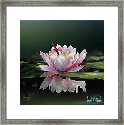 Lotus Meditation Framed Print