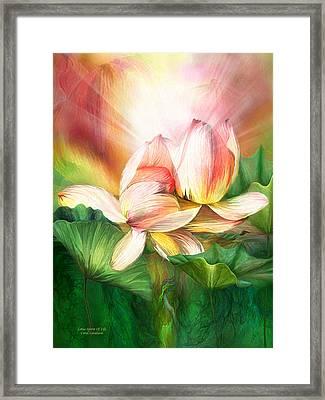 Lotus - Spirit Of Life Framed Print