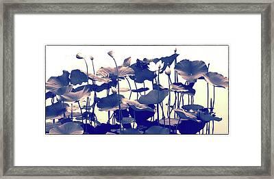 Lotus Tapestry Framed Print