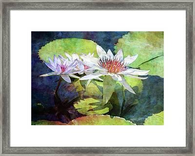 Lotus Trio 2923 Idp_2 Framed Print