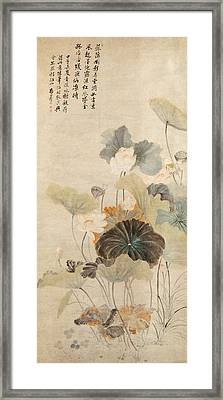 Lotuses On A Summer Evening Framed Print by Yun Shouping