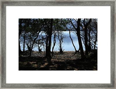 Framed Print featuring the photograph Lough Leane Through The Woods by Aidan Moran