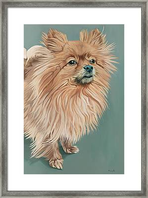 Louie The Majestic Framed Print