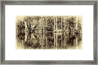 Louisiana Bayou 3 - Paint Sepia Framed Print by Steve Harrington
