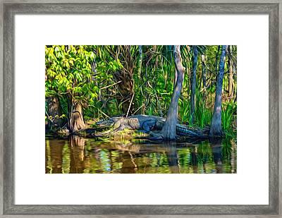 Louisiana Bayou 3 - Paint Framed Print by Steve Harrington
