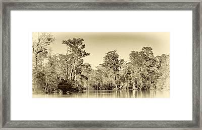 Louisiana Bayou 5 - Paint Sepia Framed Print by Steve Harrington